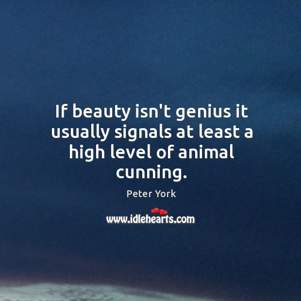 If beauty isn't genius it usually signals at least a high level of animal cunning. Peter York Picture Quote