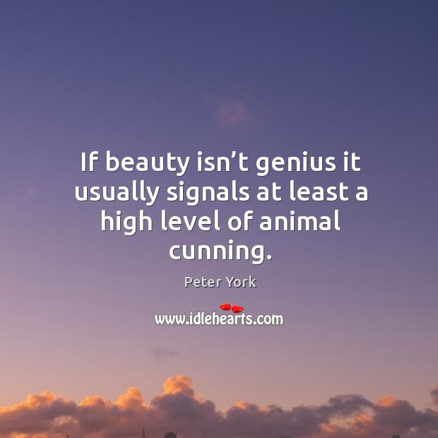 If beauty isn't genius it usually signals at least a high level of animal cunning. Image