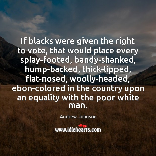 Image, If blacks were given the right to vote, that would place every