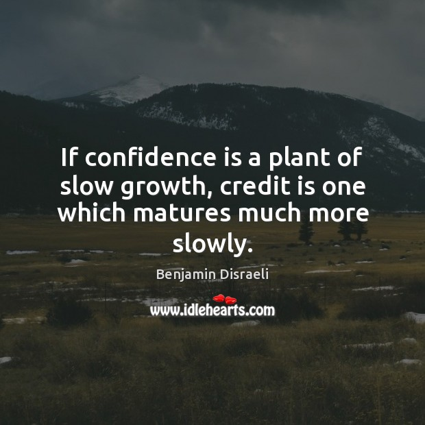 If confidence is a plant of slow growth, credit is one which matures much more slowly. Benjamin Disraeli Picture Quote