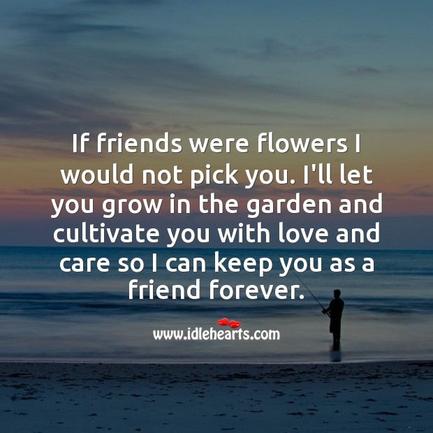 Inspirational Friendship Quotes Image