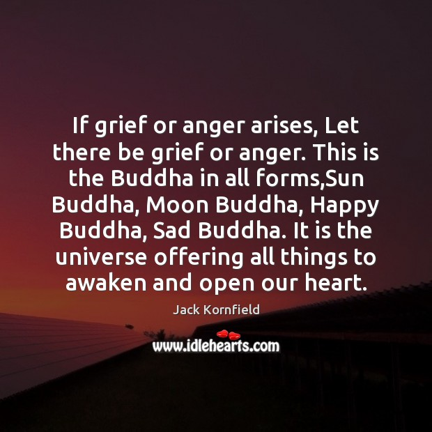 If grief or anger arises, Let there be grief or anger. This Image