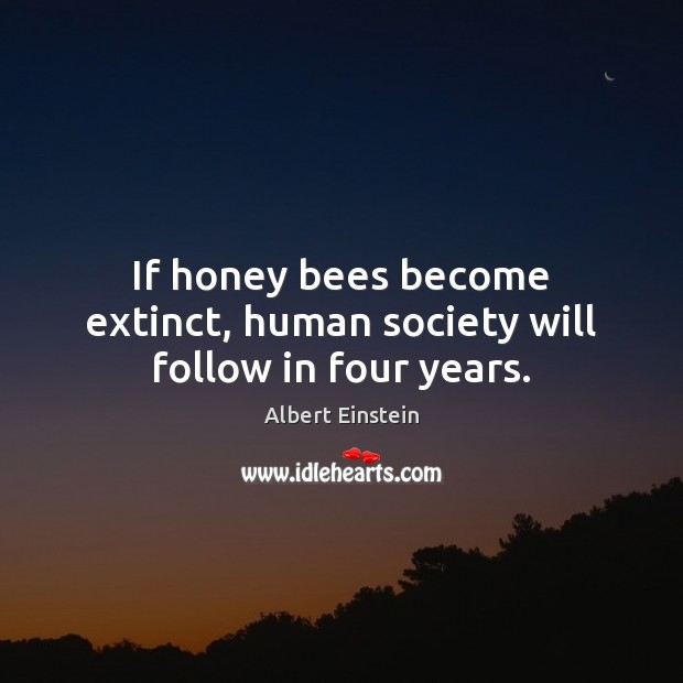 Image, If honey bees become extinct, human society will follow in four years.