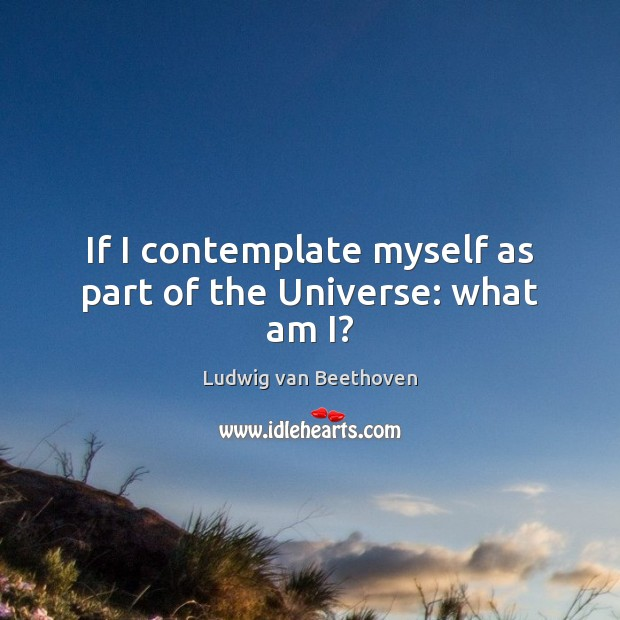 If I contemplate myself as part of the Universe: what am I? Ludwig van Beethoven Picture Quote