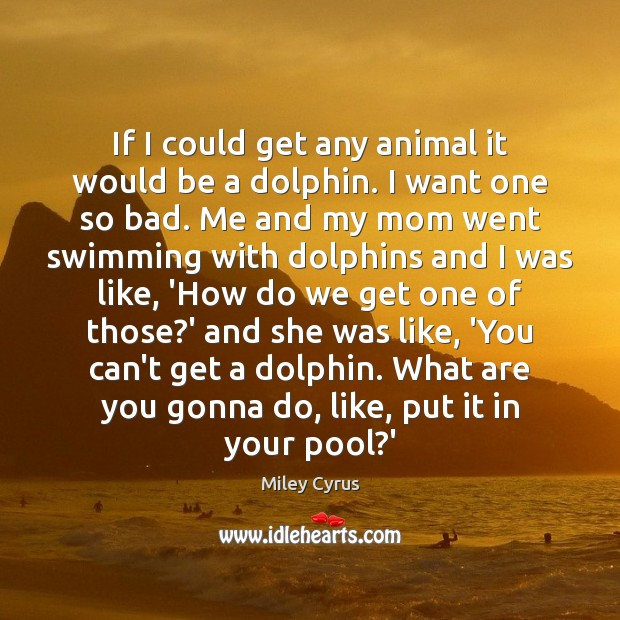 Image, If I could get any animal it would be a dolphin. I