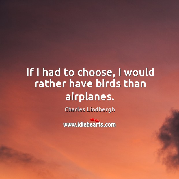 If I had to choose, I would rather have birds than airplanes. Image