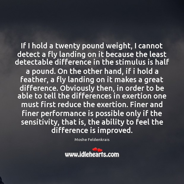 If I hold a twenty pound weight, I cannot detect a fly Performance Quotes Image