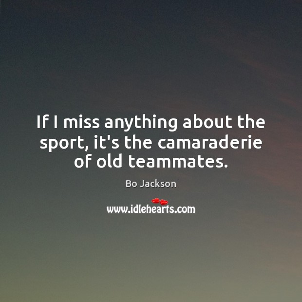 If I miss anything about the sport, it's the camaraderie of old teammates. Bo Jackson Picture Quote