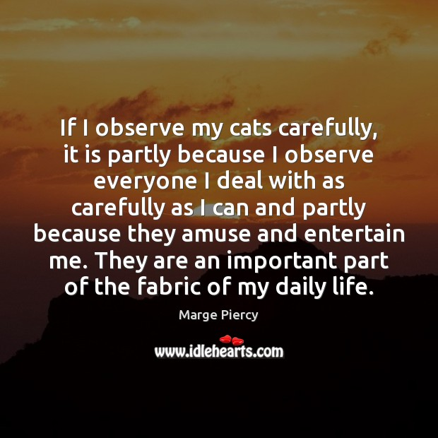 If I observe my cats carefully, it is partly because I observe Marge Piercy Picture Quote