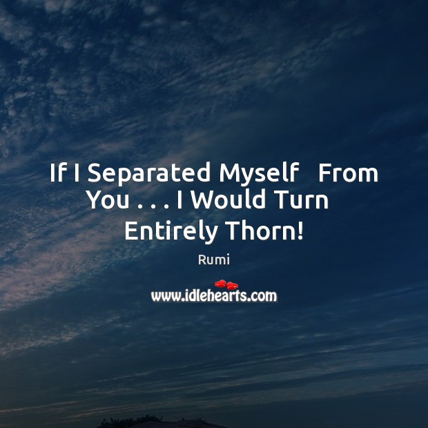 If I Separated Myself   From You . . . I Would Turn   Entirely Thorn! Image