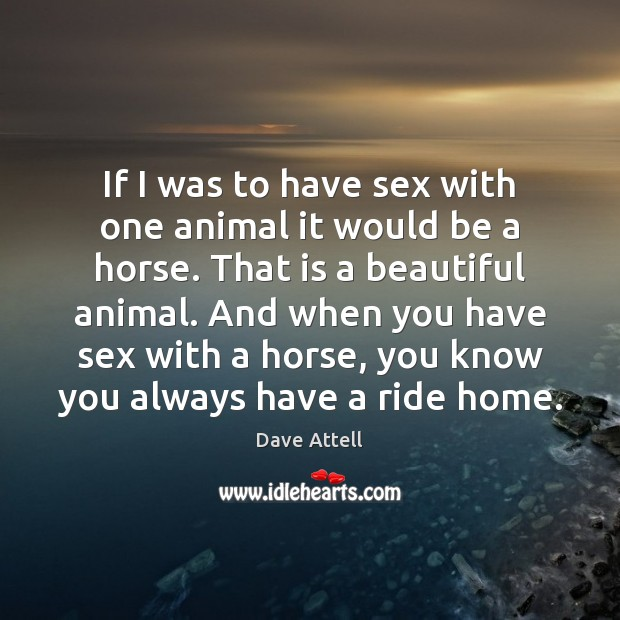 If I was to have sex with one animal it would be Dave Attell Picture Quote