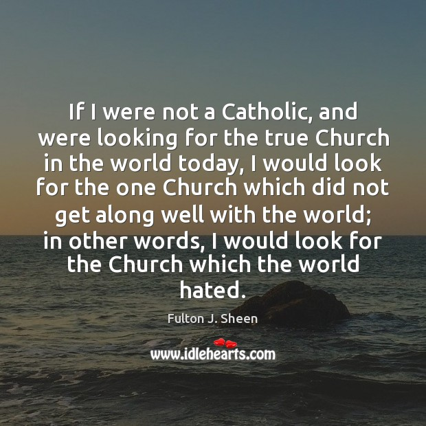 If I were not a Catholic, and were looking for the true Image