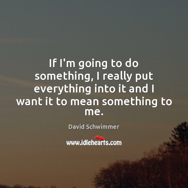 If I'm going to do something, I really put everything into it David Schwimmer Picture Quote