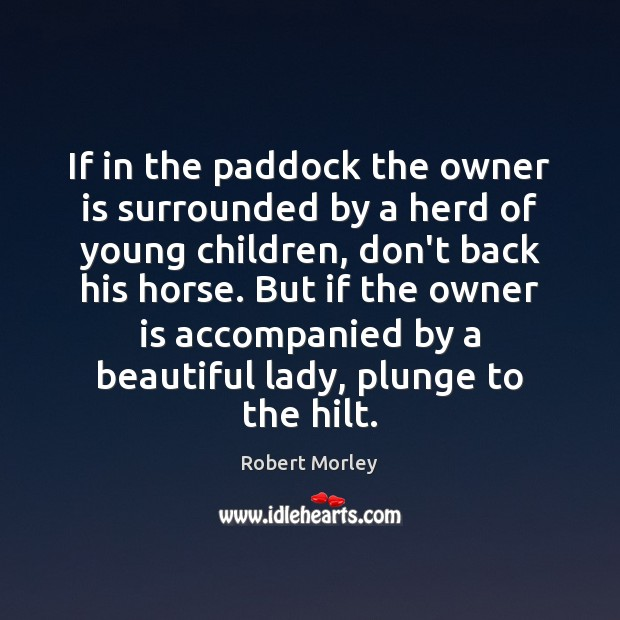 Image, If in the paddock the owner is surrounded by a herd of