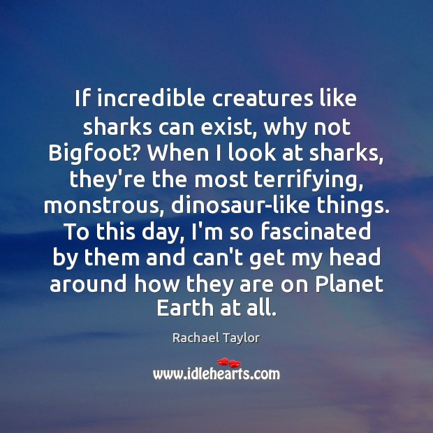 Image, If incredible creatures like sharks can exist, why not Bigfoot? When I