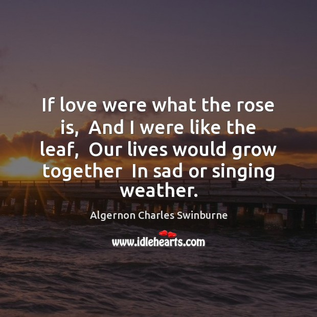 If love were what the rose is,  And I were like the Algernon Charles Swinburne Picture Quote