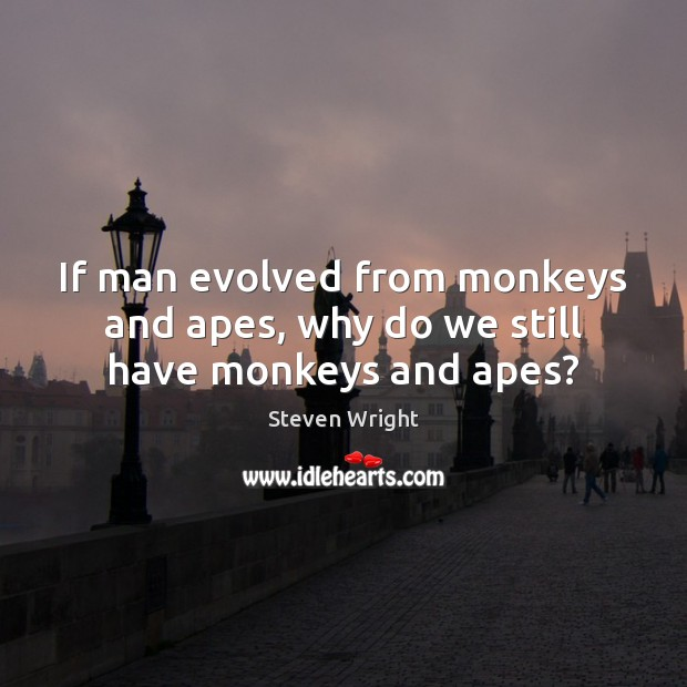 Image, If man evolved from monkeys and apes, why do we still have monkeys and apes?