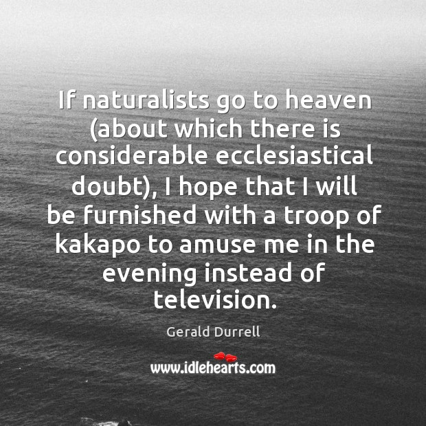 Image, If naturalists go to heaven (about which there is considerable ecclesiastical doubt),