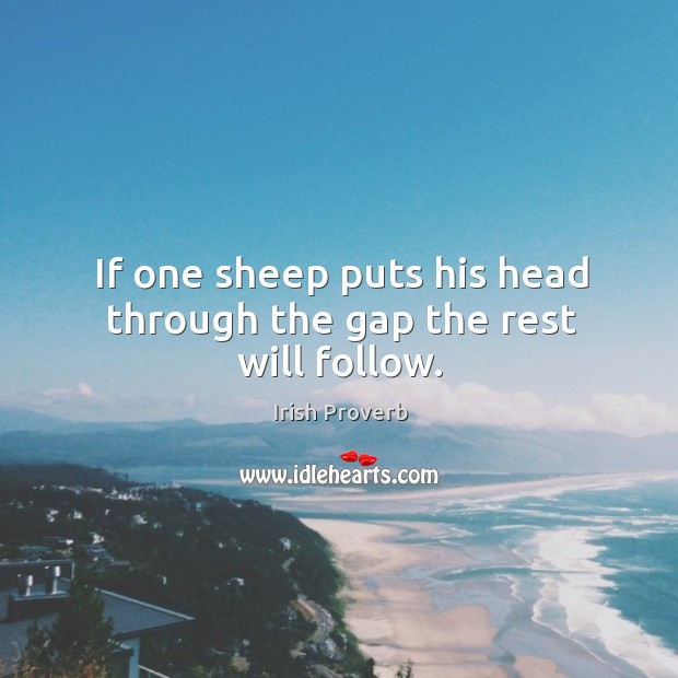 Image, If one sheep puts his head through the gap the rest will follow.