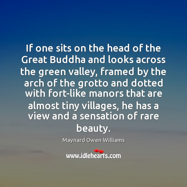 If one sits on the head of the Great Buddha and looks Maynard Owen Williams Picture Quote