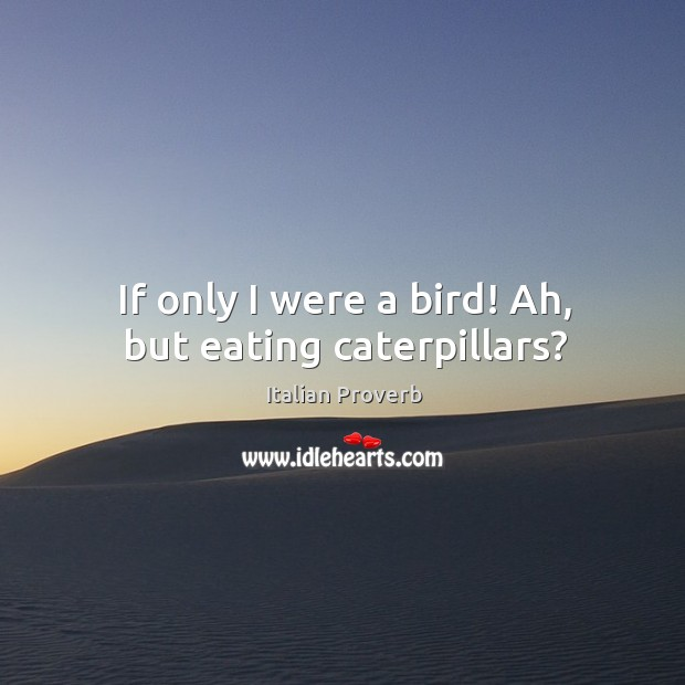 Image, If only I were a bird! ah, but eating caterpillars?
