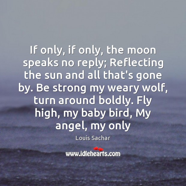 If only, if only, the moon speaks no reply; Reflecting the sun Louis Sachar Picture Quote