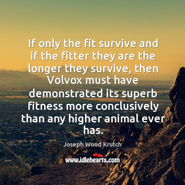 If only the fit survive and if the fitter they are the Joseph Wood Krutch Picture Quote