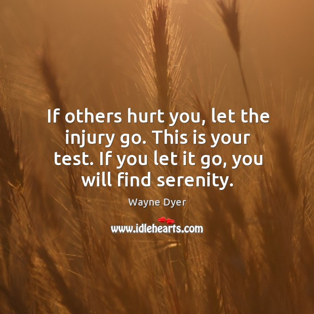 Image, If others hurt you, let the injury go. This is your test.