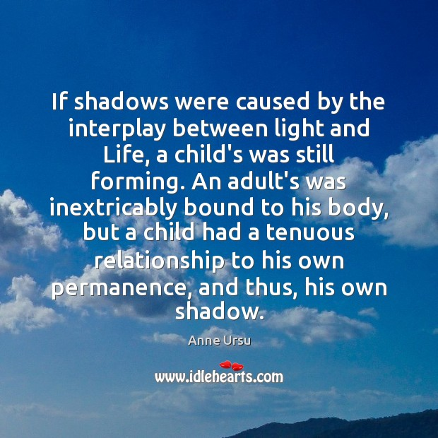 If shadows were caused by the interplay between light and Life, a Anne Ursu Picture Quote