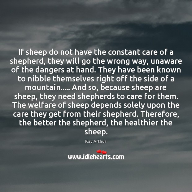If sheep do not have the constant care of a shepherd, they Kay Arthur Picture Quote