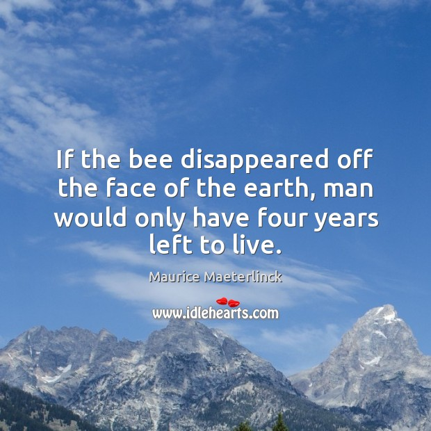 Image, If the bee disappeared off the face of the earth, man would