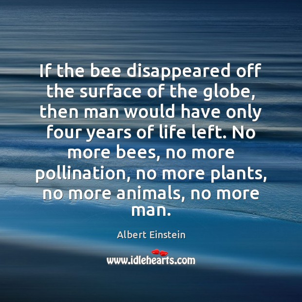 If the bee disappeared off the surface of the globe, then man Image