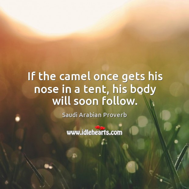 Image, If the camel once gets his nose in a tent, his body will soon follow.