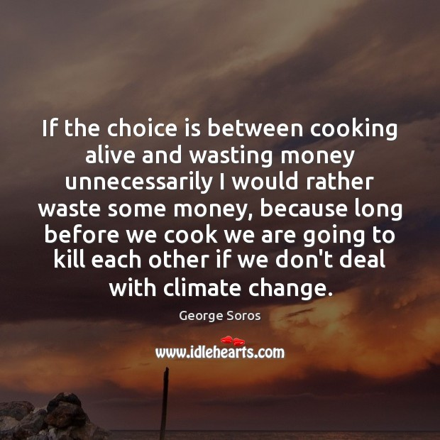 If the choice is between cooking alive and wasting money unnecessarily I George Soros Picture Quote