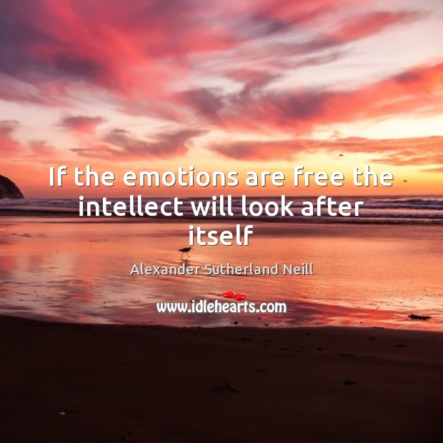 Image, If the emotions are free the intellect will look after itself