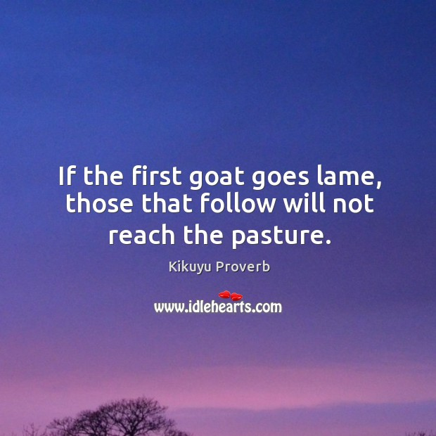 If the first goat goes lame, those that follow will not reach the pasture. Kikuyu Proverbs Image