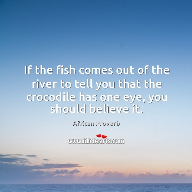 Image, If the fish comes out of the river to tell you that the crocodile has one eye, you should believe it.