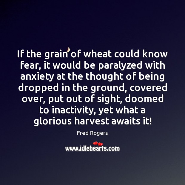 Image, If the grain of wheat could know fear, it would be paralyzed