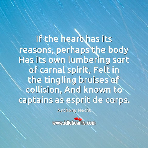 If the heart has its reasons, perhaps the body Has its own Image