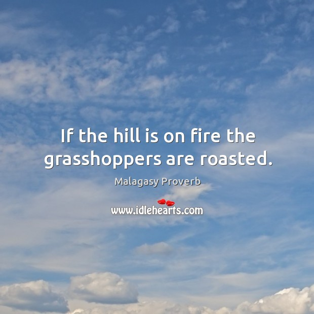 If the hill is on fire the grasshoppers are roasted. Malagasy Proverbs Image