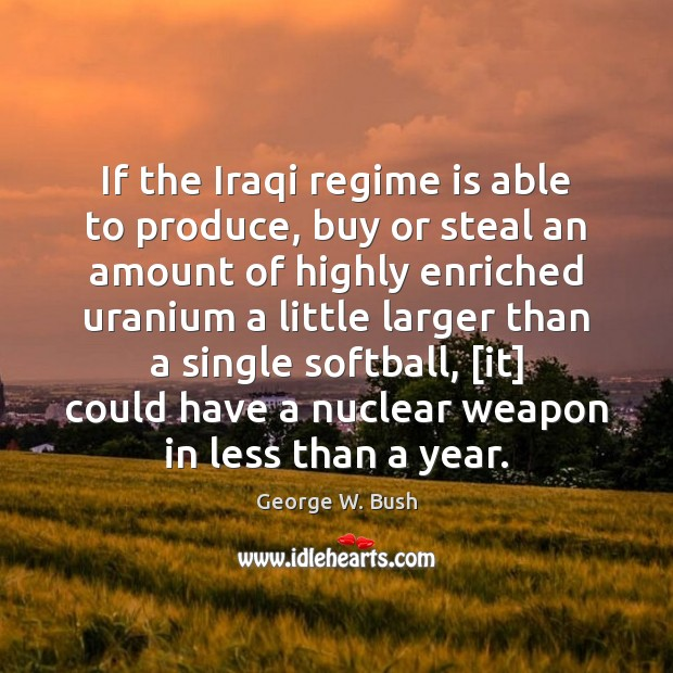 Image, If the Iraqi regime is able to produce, buy or steal an