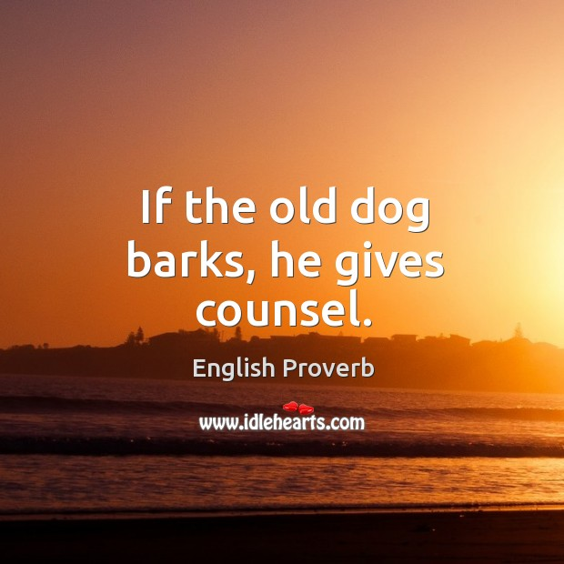 Image, If the old dog barks, he gives counsel.