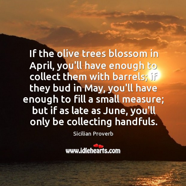 If the olive trees blossom in april, you'll have enough to collect them with barrels Sicilian Proverbs Image