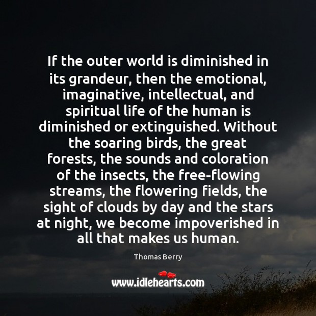 If the outer world is diminished in its grandeur, then the emotional, Thomas Berry Picture Quote