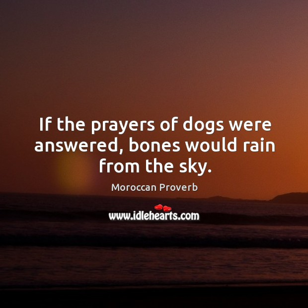 If the prayers of dogs were answered, bones would rain from the sky. Moroccan Proverbs Image