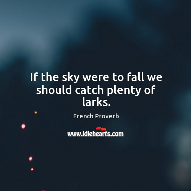If the sky were to fall we should catch plenty of larks. French Proverbs Image