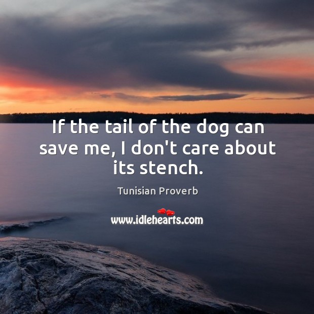 If the tail of the dog can save me, I don't care about its stench. Tunisian Proverbs Image