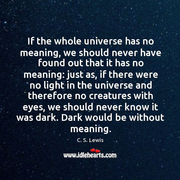 If the whole universe has no meaning, we should never have found out that it has no Image