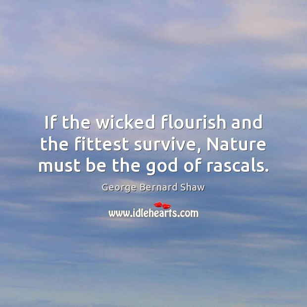Image, If the wicked flourish and the fittest survive, Nature must be the god of rascals.