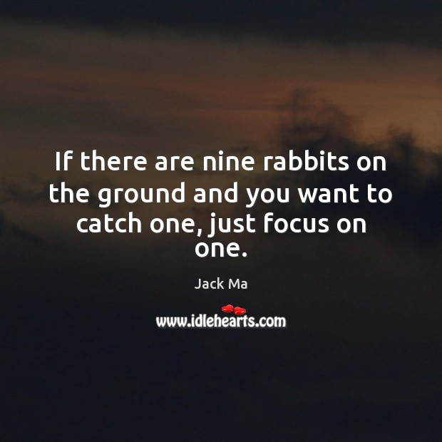 If there are nine rabbits on the ground and you want to catch one, just focus on one. Jack Ma Picture Quote